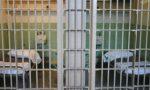 Detenuto devasta la cella in carcere a Sanremo