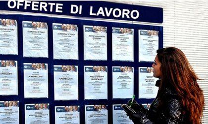 Da Cervo a Montecarlo le nuove offerte di lavoro dei centri per l'impiego aggiornate al 23 gennaio