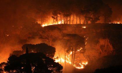 Di nuovo in fiamme le alture tra le province di Imperia e Savona, in frazione Rollo di Andora