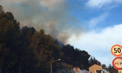 Incendio Rollo-Cervo: le fiamme divampano ancora