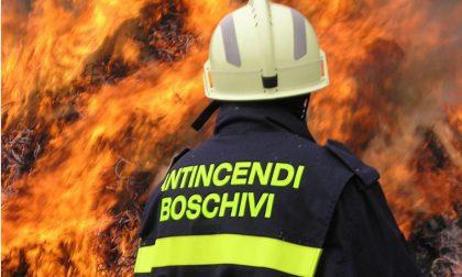 Incendio boschivo sopra Aurigo e di un capanno a Diano Borello/ Serata di lavoro per i vigili del fuoco