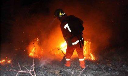 Bruciati un etto e mezzo di bosco e pascolo a Tavole e Villatella nell'entroterra di Imperia/ Elicottero in azione