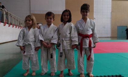 Judo OK Club Imperia: dirompente ingresso nel 2017