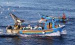 Finanziamenti da 250mila euro per la pesca imperiese