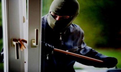 Serie di furti nella stessa notte in zona Solaro e Capo Nero