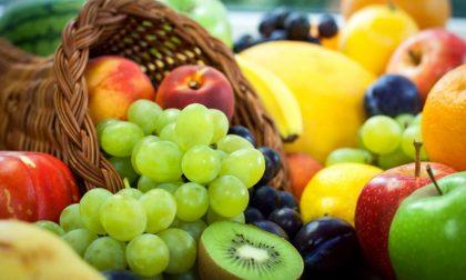 Al via a Camporosso il ciclo di conferenze su alimetazione e stile di vita