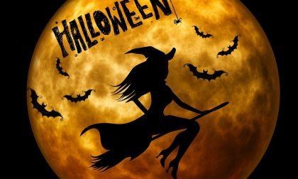Festa di Halloween a Imperia