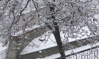 E' scesa la neve nell'entroterra di Imperia/ le foto dell'imbiancata