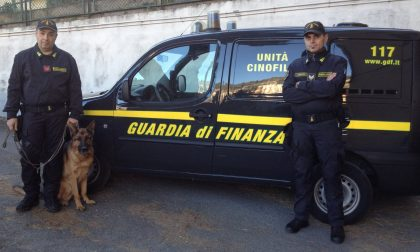 Italiano arrestati sull'autobus con 24 kg di marijuana e hascisc
