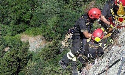 Un cane dato per disperso sul monte Toraggio, allertati i vigili del fuoco