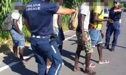 Diano Marina: un anno di polizia municipale in un video