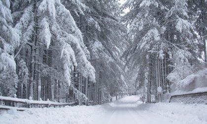 Nevicata record a Triora: allerta meteo in Liguria e in provincia di Imperia
