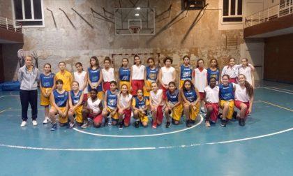Blue Ponente Basket: tutti i risultati del sodalizio femminile