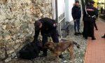 Blitz dei cinofili a Sanremo, sequestrato spinello fuori dalla scuola