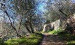 Ponente Experience: suggestiva escursione sull'anello Gazzelli-Chiusanico