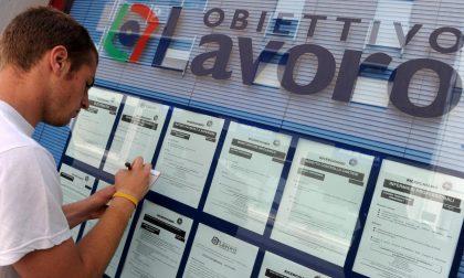 Cresce dell'1 per cento l'occupazione in Liguria