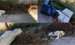 Mobili, sterpaglie e rifiuti abbandonati lungo la strada a Bussana