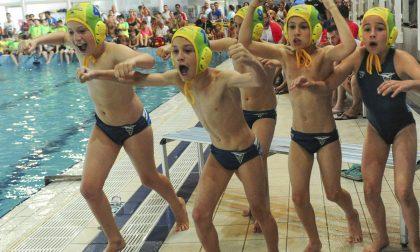Rari Nantes Imperia ospita 300 atleti per il Habawaba