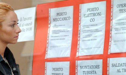 Le nuove offerte di lavoro della settimana: ecco chi assume in provincia e Costa Azzurra
