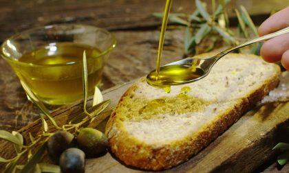 Olio Riviera Ligure DOP, 4 progetti per sviluppare la filiera
