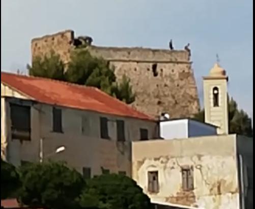Giochi pericolosi sul tetto della fortezza e il video fa subito scalpore