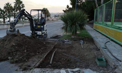 Per la nuova scuola Pascoli Sanremo costretta a sacrificare piante e aiuole storiche lungo la ciclabile