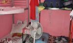 Favoreggiamento dell'immigrazione clandestina, polizia denuncia affittuario in nero