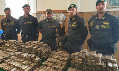 Sequestrati dalla Guardia di Finanza a Ventimiglia 144 kg di droga