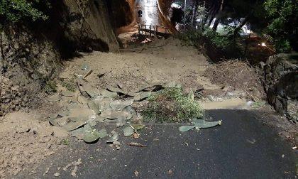 Frane e alberi caduti per il maltempo in provincia di Imperia