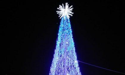 Si accende l'albero di Natale di Sanremo VIDEO
