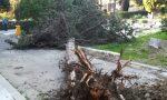 Cimiteri chiusi per il forte vento