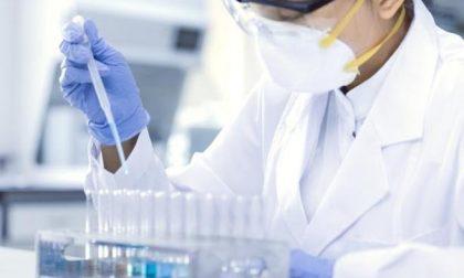 Coronavirus: in Liguria 524 positivi, 90 in più rispetto a ieri. Da inizio emergenza 33 decessi