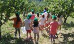 Ventimiglia, centri estivi aperti già da metà giugno