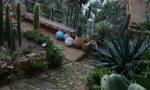 Riapre al pubblico il Giardino Esotico Pallanca con nuovi esemplari e iniziative