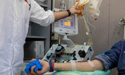 Reclutati 22 donatori di plasma  per curare il Coronavirus