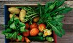 Sequestrate dai vigili 18 cassette di frutta e verdura a Ventimiglia