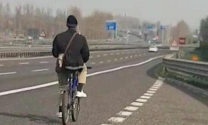 In bicicletta in autostrada fermato dalla Polizia sull'A26