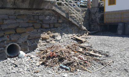 Legname e altri detriti su una spiaggia libera di Bordighera- Le foto-