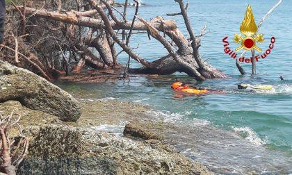 Panico a Ventimiglia: albero e muro crollano sullo scoglio dove i bagnanti prendono il sole