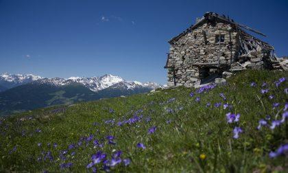 In Valle d'Aosta, l'ideale per chi ama immergersi nella natura