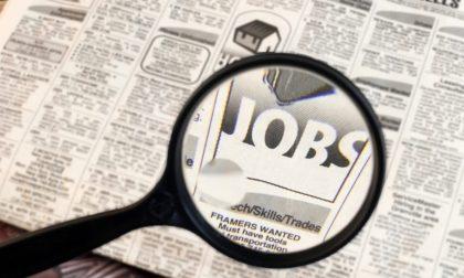 Tante nuove offerte di lavoro dei Centri per l'Impiego della Provincia