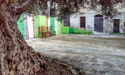 """Appuntamento nel centro storico con """"Magicamente…La Pigna"""""""