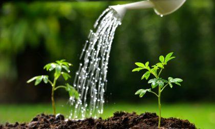 Divieto di utilizzare l'acqua potabile per irrigare campi, orti e giardini in frazione Chiappa