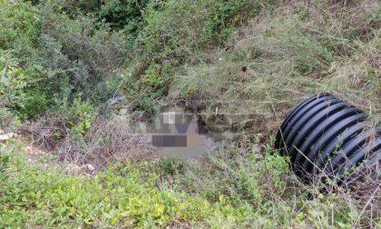 Omicidio Ventimiglia: Fedele ucciso con due proiettili di calibro diverso