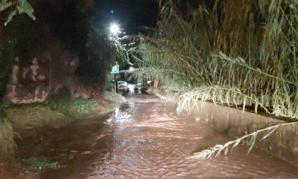 Esondato pure il torrente Nervia a Dolceacqua in località Praeli e San Filippo. Foto