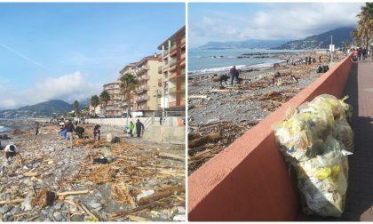 Volontari puliscono le spiagge a Ventimiglia