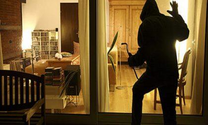 """""""C'è uno zingaro che è entrato in un palazzo per rubare"""" ma era un condomino"""