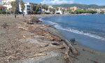 Raccolta legname in spiaggia, si può fino al 30 novembre