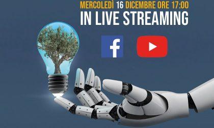 Esoscheletri futuristici per coltivare le olive