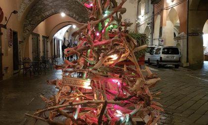 Si accende il Natale con l'albero dell'associazione i.Theicos